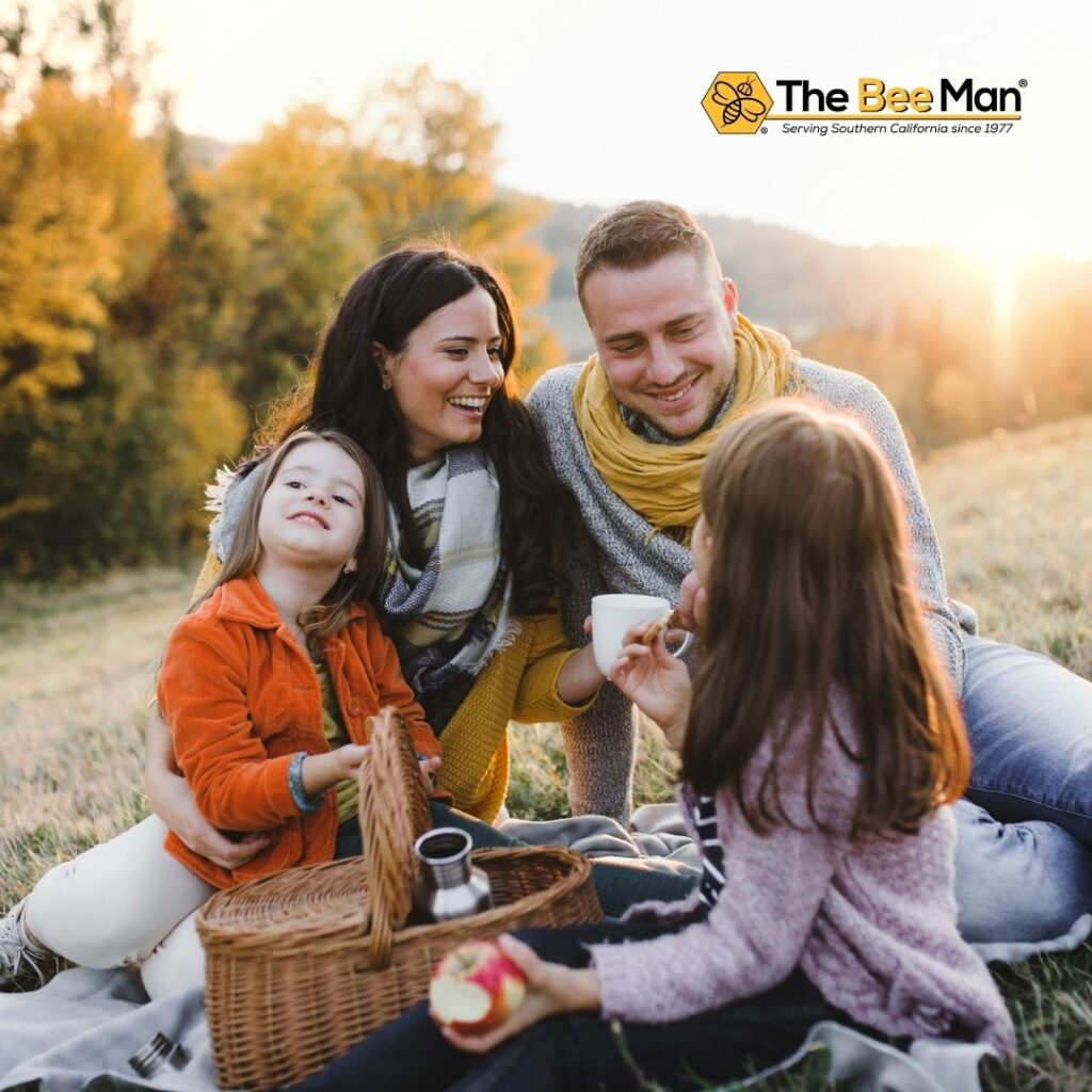 Keep-Bees-Away-From-Your-Picnic-According-to-Bee-and-Wasp-Removal-Professionals